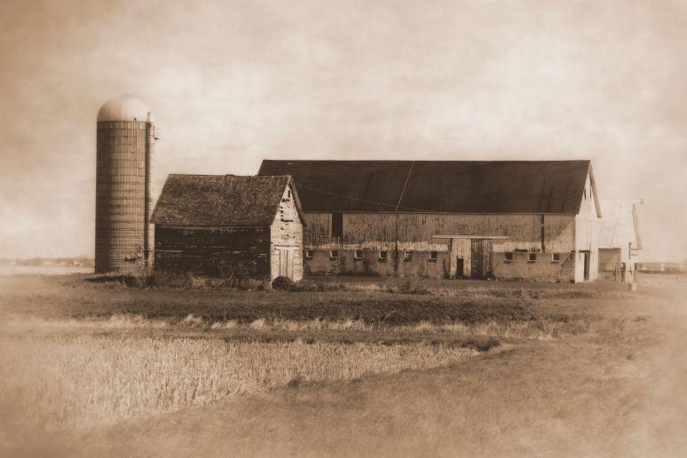 Barns and Silo