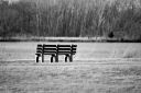 Ode to the Bench