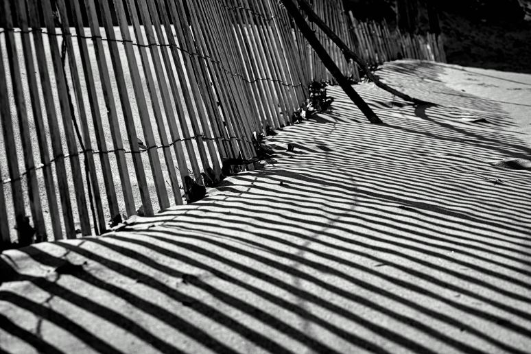 Shadows at the Dunes