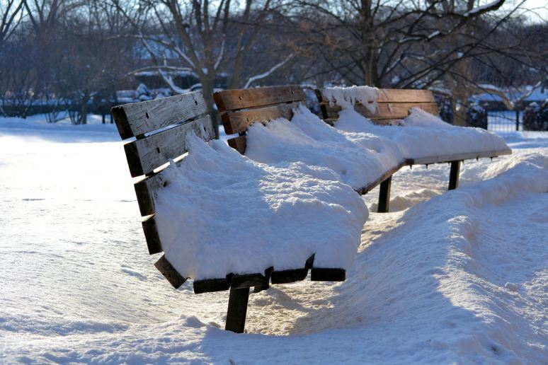 The Benches of Cantigny