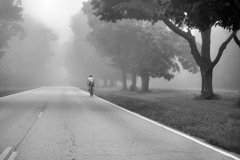Riding into the Fog