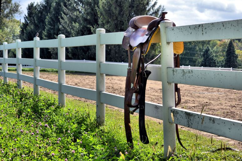 Saddle on the Fence