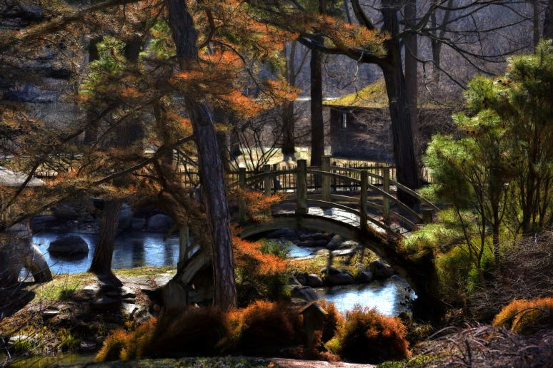 Japanese Tea Garden at Fabyan Art